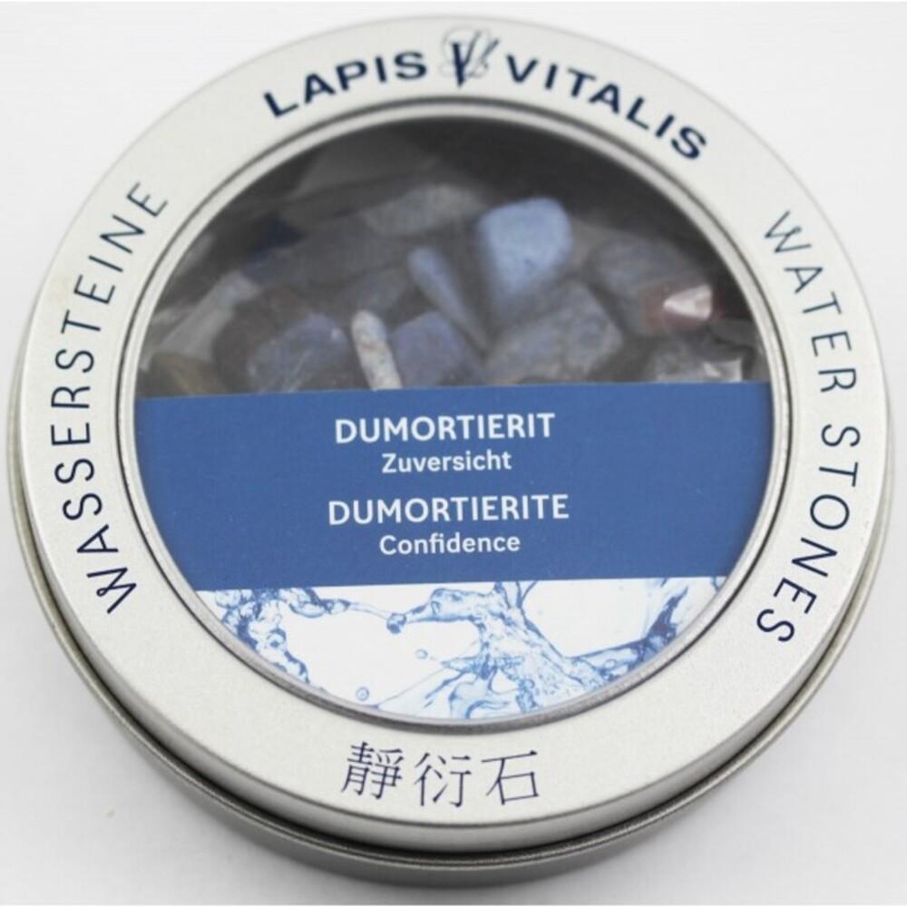 Dumortierit Wasserstein Mischung Zuversicht Lapis Vitalis Edelstein Wasser Set