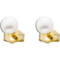 Ohrringe - Ohrstecker Gelbgold 585 Süßwasserzuchtperle